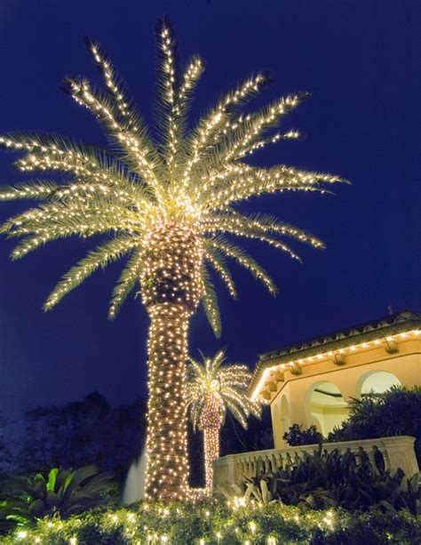 light up outdoor trees christmas lighting texas palms trees creates a paradise in your