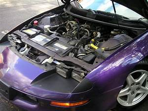 1997 To 1998 Bright Purple Metallic Camaro  Rs  Z28  Don U0026 39 T