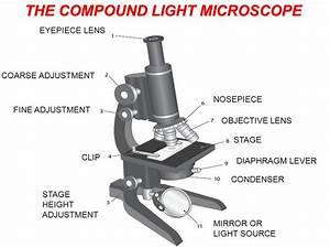 Diaphragm Control Lever Microscope