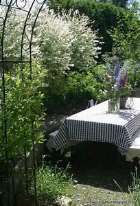 Garten Im Mai : ein schweizer garten harlekinweide 39 hakuro nishiki 39 ~ Markanthonyermac.com Haus und Dekorationen