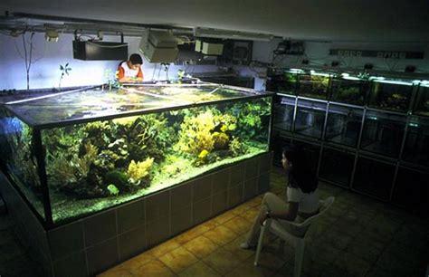 aquarium 1000 litres neuf aquarium 1000 litres neuf