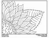 Sunflower Coloring Corner Paper Sheets sketch template