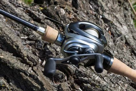 find   fishing reels baitcasting reels salty