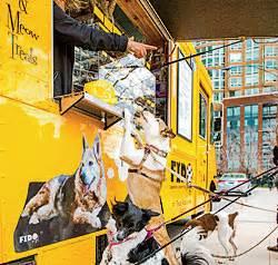 Fido Pet Shop : the insider s guide to pet friendly chicago chicago magazine july 2016 ~ Markanthonyermac.com Haus und Dekorationen