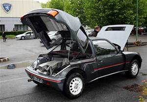 205 Turbo 16 : rival direct peugeot 205 turbo 16 ~ Maxctalentgroup.com Avis de Voitures
