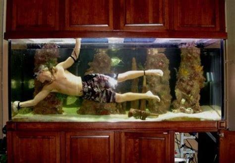 Cheap Living Room Furniture Under 300 by オシャレ 面白い カッコイイ 素敵な アクアリウム 水槽 金魚鉢 を集めてみた 愛すべき道具達