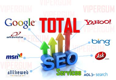 Buy Seo Services by Increasing Site Position Using Total Seo Services For 55