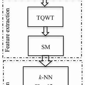 pdf developing a tunable q factor wavelet transform With eeg block diagram