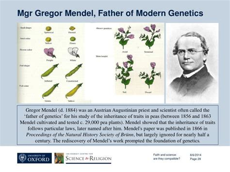 of modern genetics ppt the challenges and opportunities of faith and science issues in pastoral care