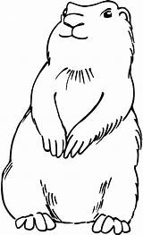 Dog Prairie Clip Dogs Clipart Coloring Pages Trace Drawing Outline Line Cliparts Colouring Fuzz Praire Template Templates Clipground Printable Getcolorings sketch template