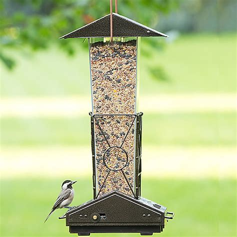 duncraft com fortress squirrel proof bird feeder