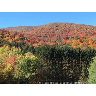 Slide Mountain Catskills vintage cabin ulster county big