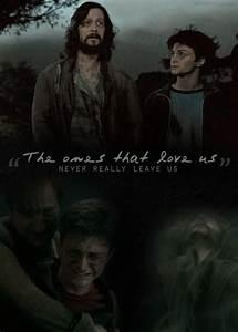 The 25+ best Si... Sirius Azkaban Quotes