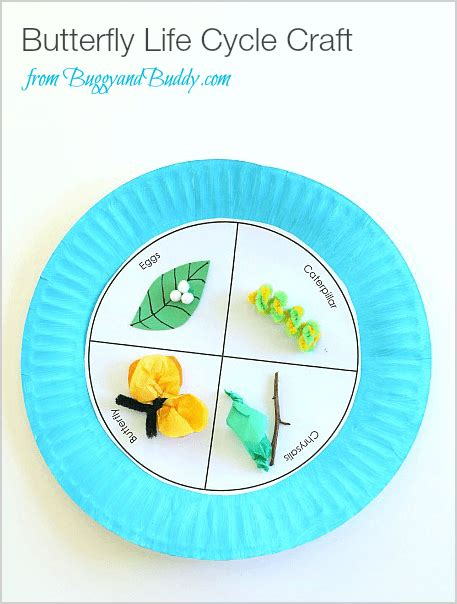Butterfly Life Cycle Paper Plate Toy Craft Free Fjextange Template by Butterfly Life Cycle Paper Plate Craft Buggy And Buddy