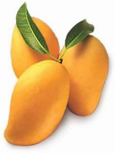 General Knowledge : National Fruit of India ~ Sarkarijob's G.K