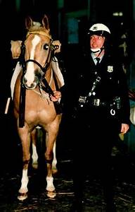 Pete--a Philadelphia Police horse whose hind leg went down ...