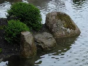 Bachläufe Und Wasserfälle : leichtigkeit und tiefe gartengestaltung in friedland g ttingen und umgebung beschreibung ~ Sanjose-hotels-ca.com Haus und Dekorationen