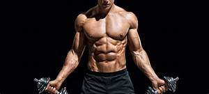 The Effect Of Anabolic Steroids On The Body