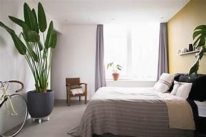Zimmerpflanzen Für Schlafzimmer : zimmerpflanzen f r ein besseres raumklima re blog ~ A.2002-acura-tl-radio.info Haus und Dekorationen