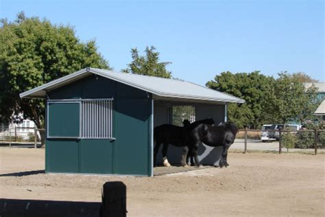 cattle run in shed md barnmaster durable safe livestock loafing sheds run