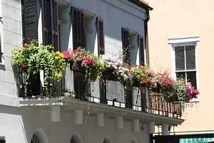 Blumen Für Schattigen Balkon : balkonbepflanzung im fr hling so wird ihr balkon zum blickfang ~ Orissabook.com Haus und Dekorationen