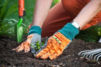 faire ses plans de cuisine se mettre au jardinage pratique fr