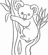 Coloring Koala Cartoon Drawing Simple Goomba Bear Printable Animal Mario Moose Getdrawings Getcolorings Colori sketch template