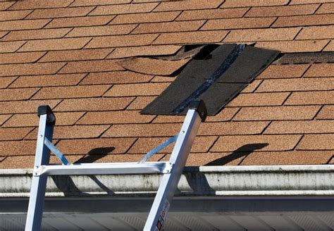 how to find leak in roof roof repair how to find and fix roof leaks pittsburgh roofing repair service for shingle