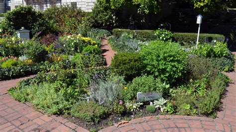 What You Need To Know About Culinary Herb Garden Design