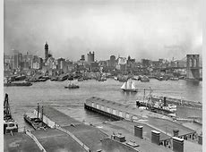 Book Review A History of Brooklyn Bridge Park The
