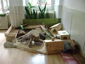 Meerschweinchen Gehege Ikea : die besten 25 kaninchenk fige ideen auf pinterest kaninchen k fig f r innen indoor ~ Orissabook.com Haus und Dekorationen