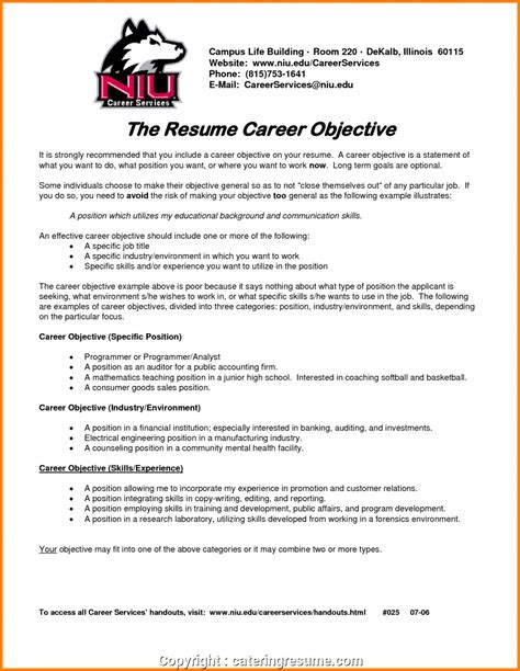 Creative Resume Objective by Creative Career Objective Statement 6 Career Objective