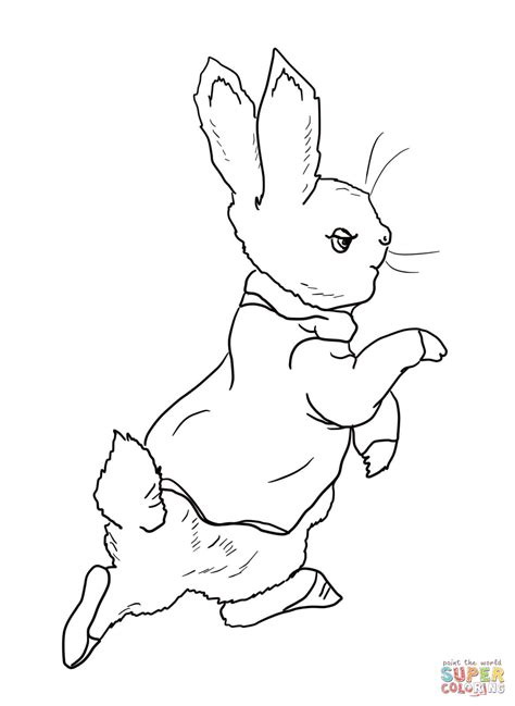 peter rabbit coloring pages    print
