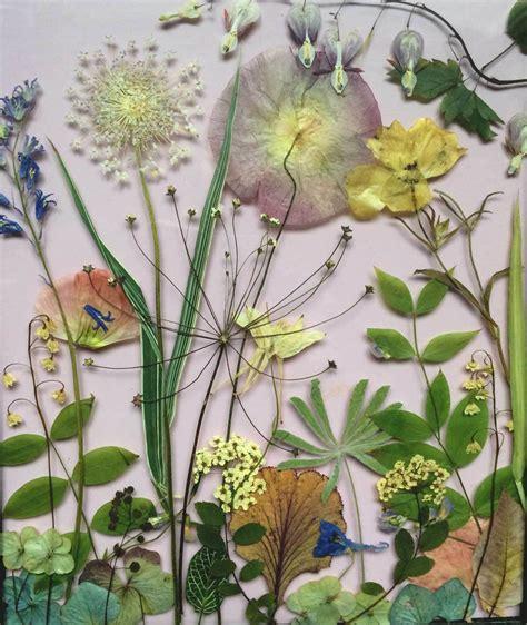 judith de vries ontwerper bloemen tuin van judith tuindagboek van judith de vries