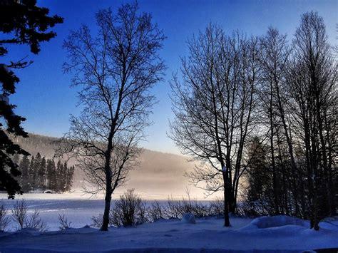 foto de Photo gratuite: Paysage D'Hiver Arbres Hiver Image