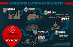 The Noise Pollution Ecosystem | Visual.ly