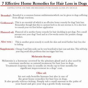 dog hair loss