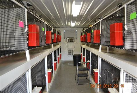 used for sale d d kennel buildings and supplies kennel buildings for