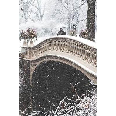 wnderlst: Central Park New York CityWinterPinterest