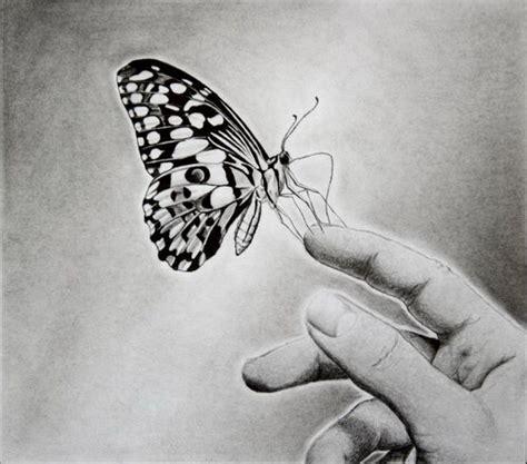 beautiful butterfly drawings  inspiration hative