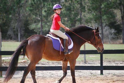 riding horseback lessons horse club fun lake rocky mountain