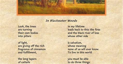 blackwater woods mary oliver poems  love pinterest