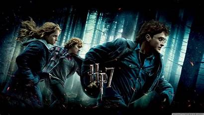 Deathly Hallows Potter Harry