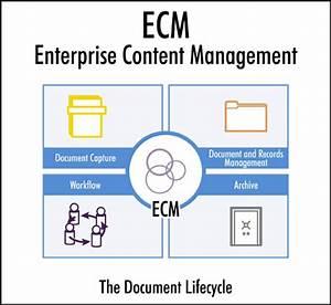 Enterprise Content Management  Ecm