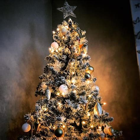 how to recycle your christmas tree and where to take it in