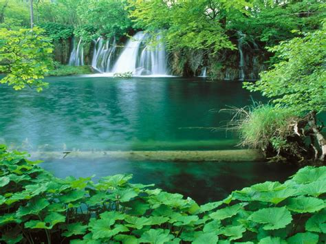 Plitvice Hd Wallpaper Of Nature In 0394652 : Wallpapers13.com