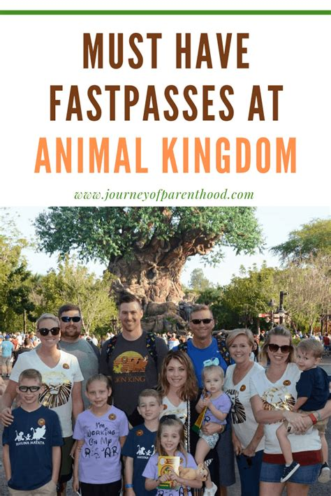 fastpass tips  recommendations  animal kingdom