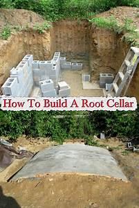 53 Building A Wine Cellar Underground, Pinterest