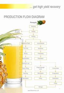 Pineapple Processing Line