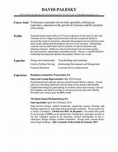 david palesky customer service sales resume With customer service sales resume